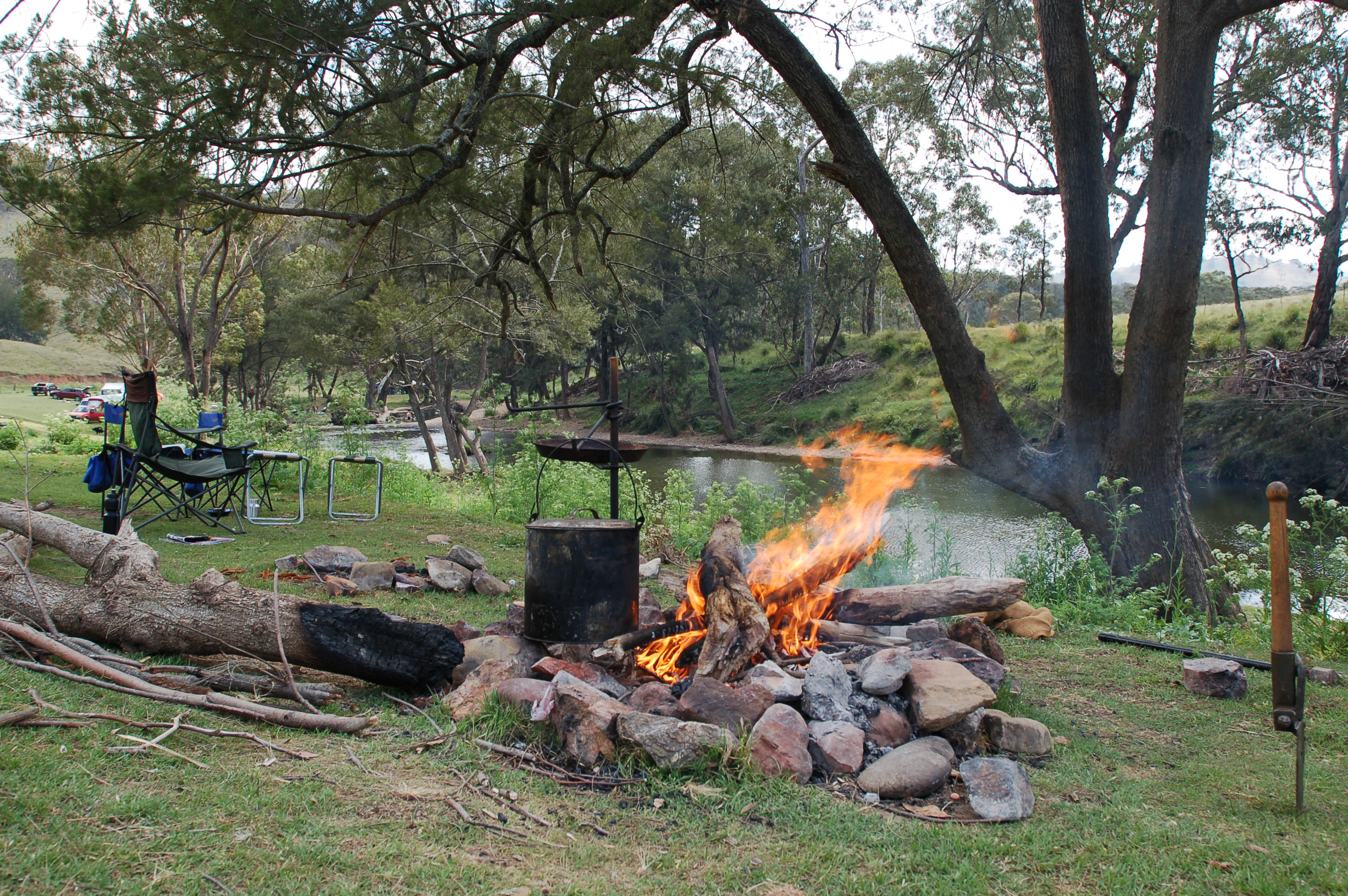 6 Best Dog Camping Areas In NSW Australia